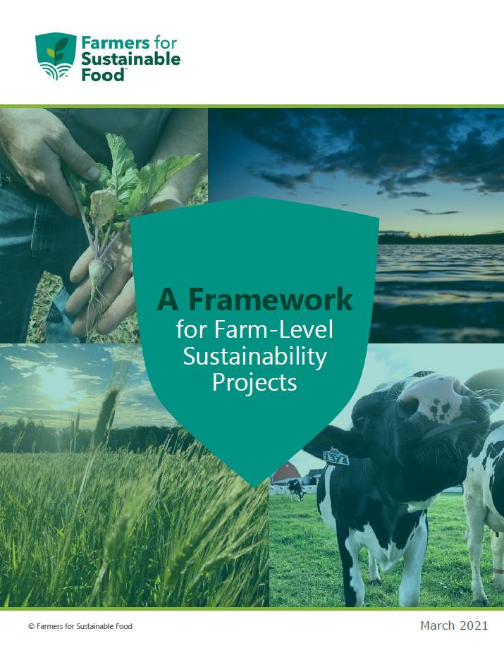 FSF_framework