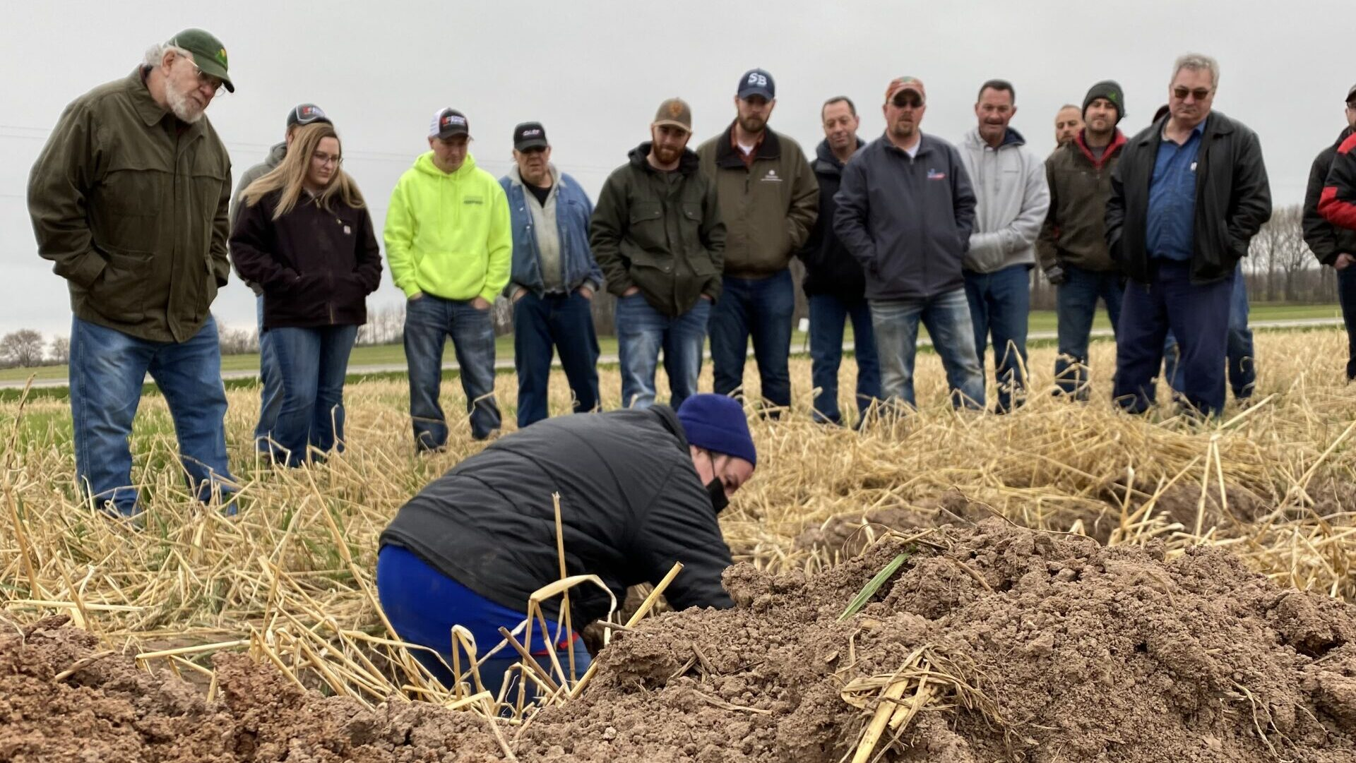 'Take a chance': Peninsula Pride Farms members innovate with cover crops