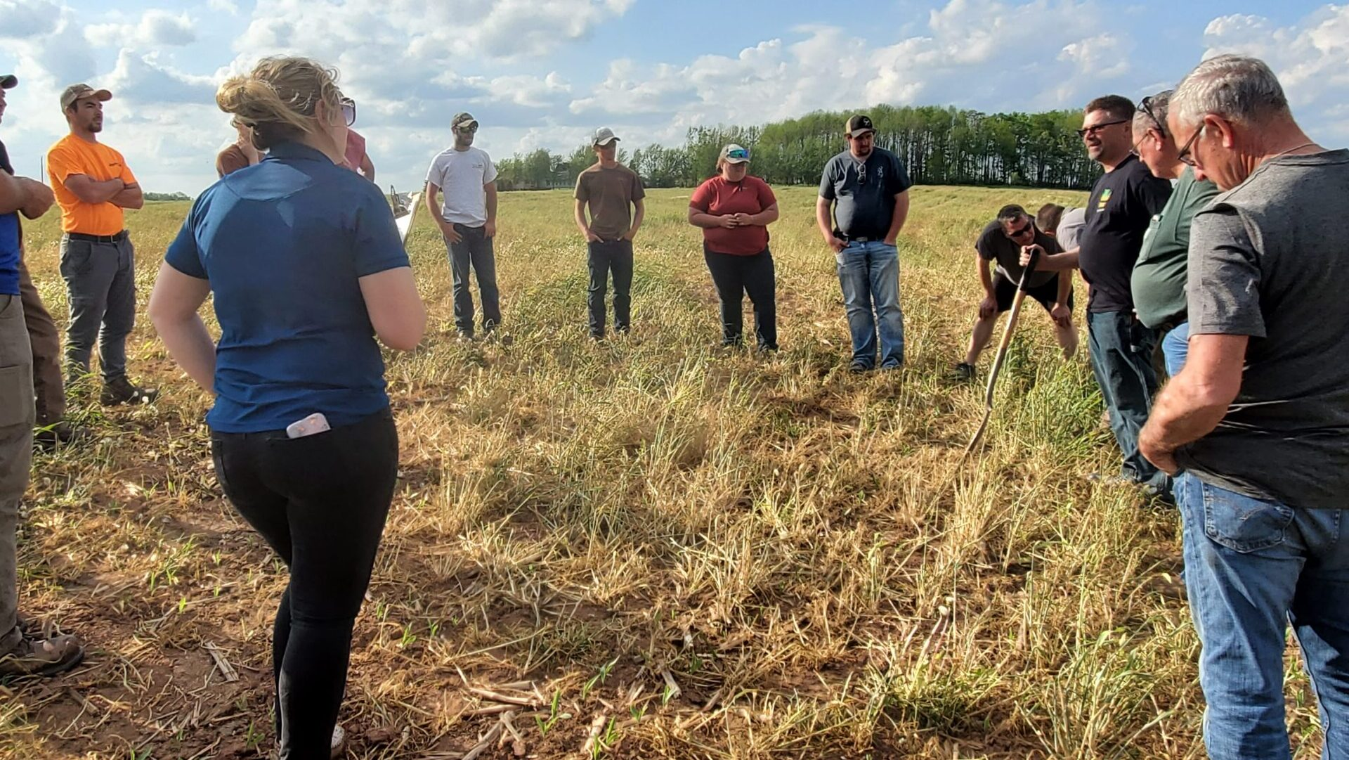 Peninsula Pride Farms: Confidence in no-till pays dividends