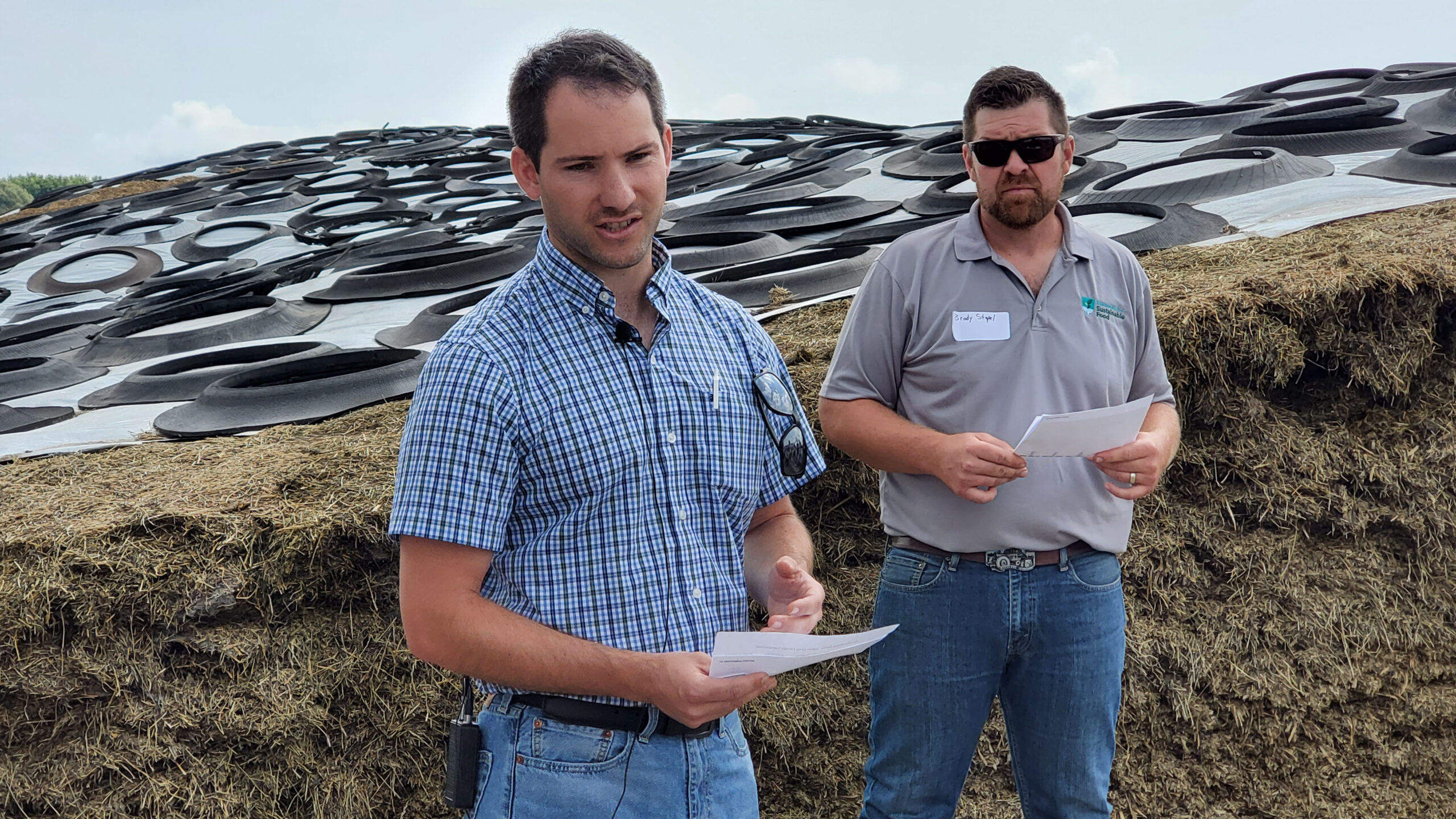 Farmers explore forage 'cocktail mixes' for soil health and profitability