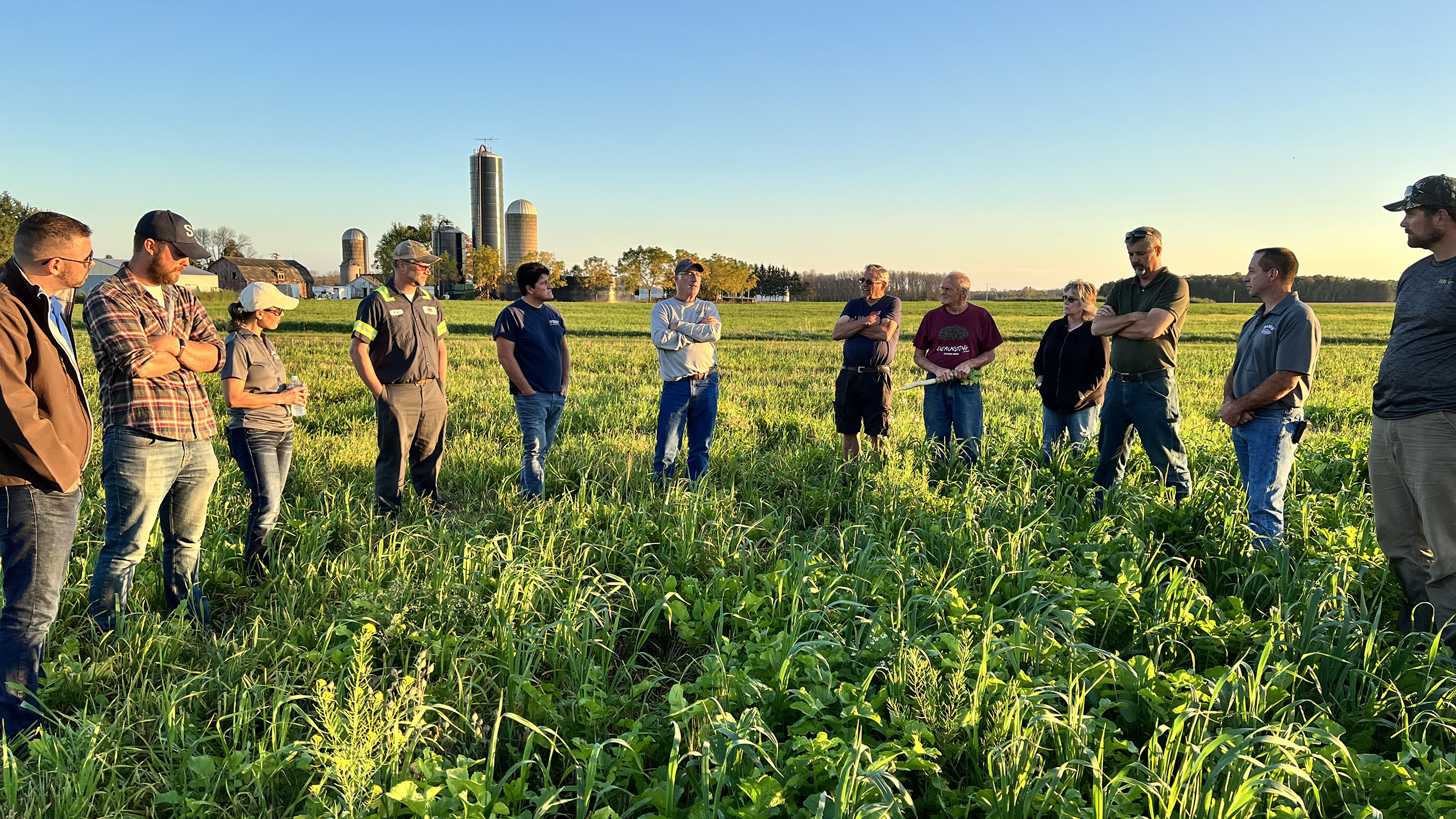 Olson Family Farms shares experience with inter-seeding cover crops